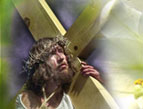 Cross Purposes: Discovering God's Love for You