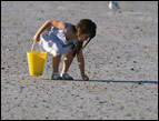 little girl with yellow sand bucket picking up shells on a beach
