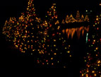 daily Devotion picture of lit christmas trees in a dark night sky