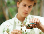 daily Devotion picture of young man pruning a branch