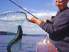 man catching a fish in a net with a fishing pole in his right hand